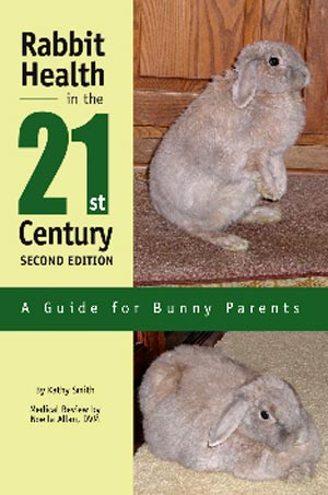 21st Century Rabbit Health
