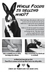 WF-HRS_leaflet_01