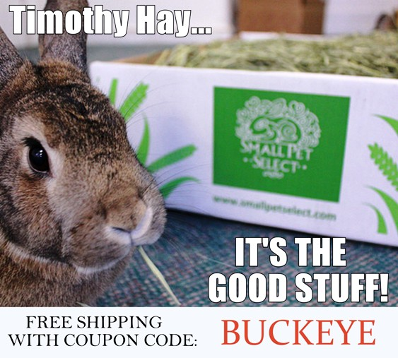 Timothy hay is healthy for rabbits